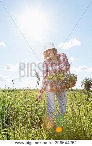 Girl With A Basket Of Flowers In The Field.