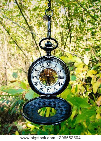 Beautiful black pocket watch on a background of green vegetation in clear weather