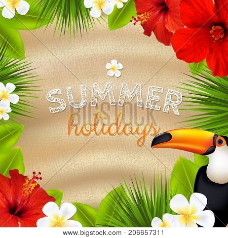 Tropical Color Banner