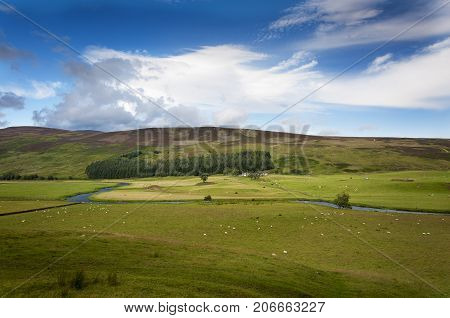 Beautiful farm with animals and a river in the Highlands of Scotland United Kingdom