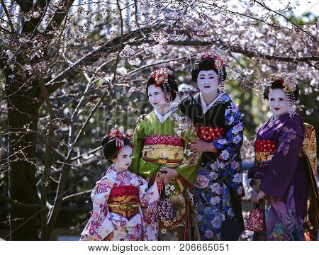JAPAN, KYOTO, APRIL, 05, 2017 - Three beautiful women and a wonderful little girl in Maiko kimono dress at old-fashioned town of Gion district   against the background of cherry blossoms, Kyoto Japan.