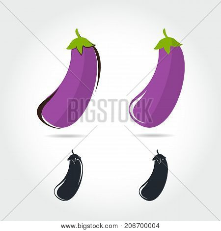 Eggplant vector icon cartoon style isolated on white background. Eggplant vector illustration. Eggplant isolated black and color icons vector silhouette. Eggplant vegetable food vector flat style