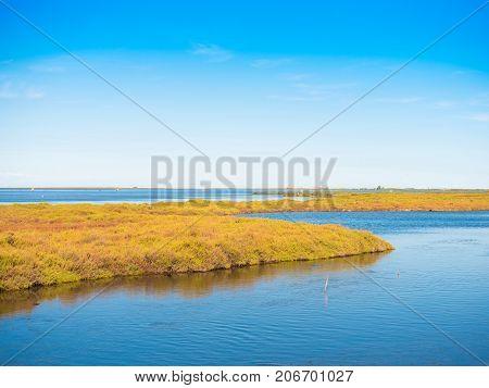 Ebro Delta Estuary And Wetlands, Tarragona, Catalunya, Spain. Copy Space For Text.