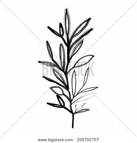 ramification with several leaves on blurred silhouette vector illustration