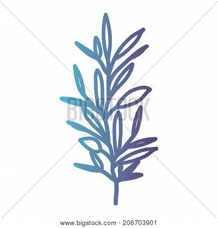 ramification with several leaves on gradient color silhouette from blue to purple vector illustration