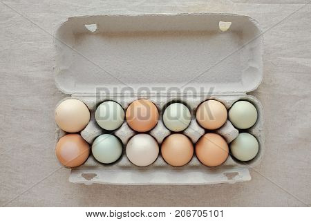 dozen organic free range eggs in carton