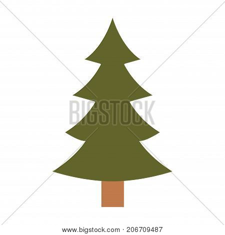 christmas tree with trunk colorful silhouette on white background vector illustration