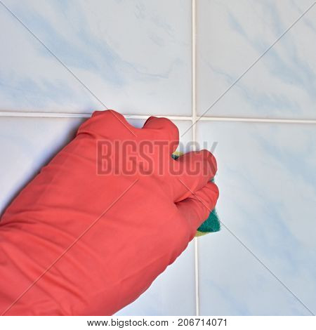 Closeup of hand in a rubber pink glove holding sponge, image with square aspect ratio