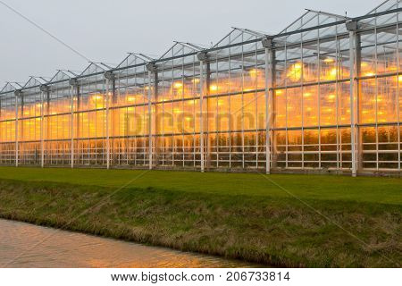 The exterior glass facade of commercial greenhouse