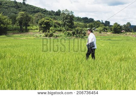 Young docter Pointing Height Destination to Future in the Green Wheat field Searching for the New Startup OpportunitiesCommunity Health and Development Hospital In Remote Areas Development Fund Concept.