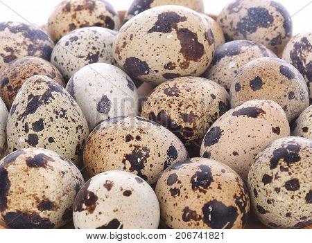 Quail eggs background  farm, raw, fragile, isolated, nature