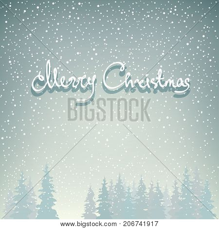 Snowfall in the Forest Snow Falls on the Spruces and Text Merry Christmas Fir Trees in Winter in Snowfall Winter Background Christmas Winter Landscape in Gray Shades