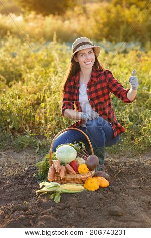 Gardener with freshly harvested vegetables in garden with sunshine. Happy woman farmer and basket with crop. Gardening, agriculture, autumn good harvest concept