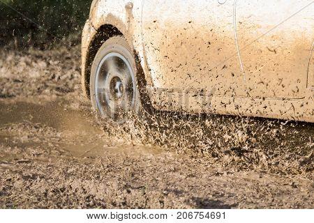 Mud debris from a rally car race ( Focus at debis)
