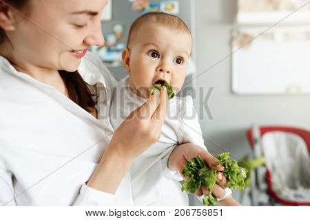 Close up of mother feeding her little baby with salad leaves during cooking lunch for whole family. Child looking aside and happily eats lettuce