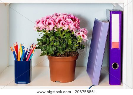 White office shelf with folder noteook flower and pencil holder