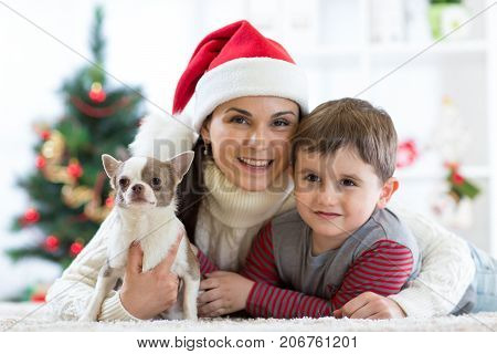 Woman and son celebrating christmas with furry friend. Mother and kid with terrier dog. Pretty child boy with puppy at x-mas tree.