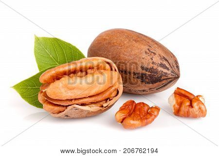 Two pecans with leaves isolated on white background.