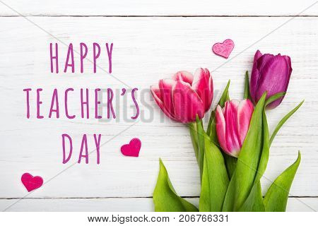 Happy Teacher's day card. Tulip on white wooden background
