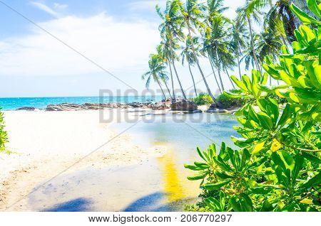Beautiful landscape of the coast of Varkala. Kerala, India.