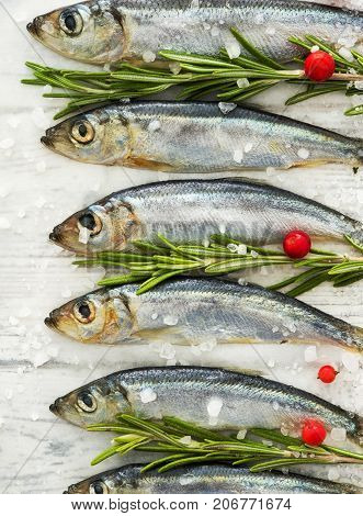 Fresh Raw Fish Baltic Herring On A Table With Fresh Herbs And Cowberry.