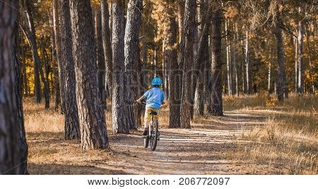 Funny kid on a bicycle in the sunny forest. happy boy cycling outdoors in helmet