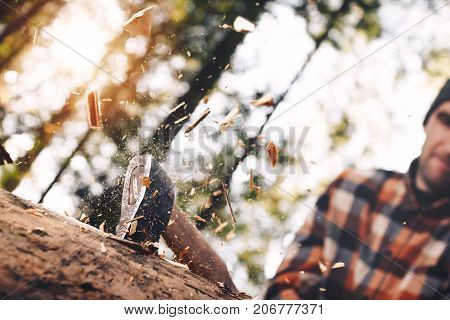 Strong And Brutal Lumberjack With Ax In His Hands Chops Tree In Forest, Wood Chips Fly Apart. Blurre
