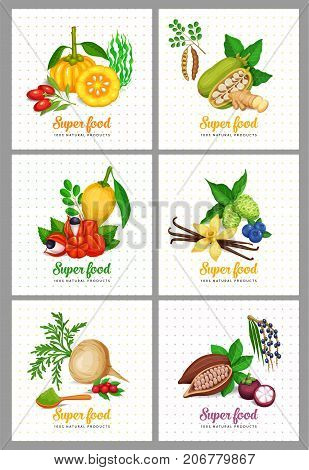 Healthy detox natural product of camu garcinia cambogia and maca. Carob, moringa, lucuma, coji berries, acai, guarana and noni. Vector illustration superfood berries and fruits poster tamplate.
