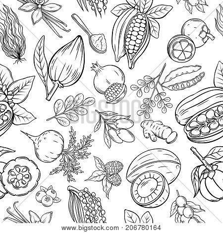 Vector sketch superfood seamless pattern. Healthy detox natural product superfood illustration for design market menu.