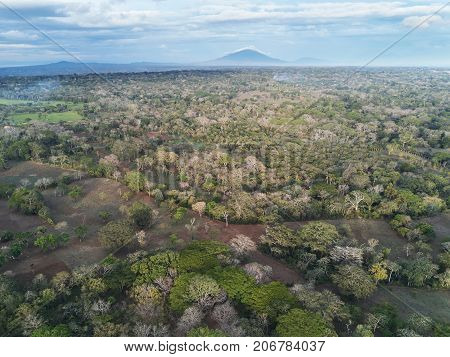 Rainforest in Nicaragua view from drone. Scenic nature view in Nicaragua