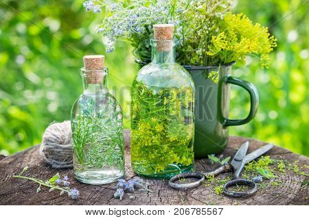 Bottles Of Tincture Or Infusion Of Healing Herbs, Medicinal Herbs In Green Enameled Mug On Old Stump