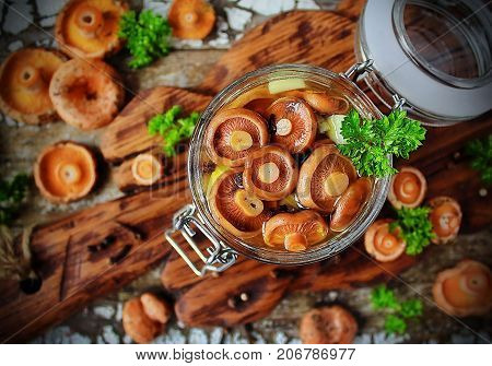 marinated mushrooms Lactarius in a glass jar and fresh mushrooms on a wooden stand