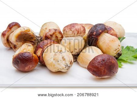 group of porcini mushrooms on marble chopping board