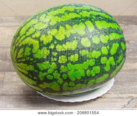 Fresh watermelon, wooden background, ripe striped melon on table, close-up of fresh red watermelon on white plate, sweet harvest. Watermelon pattern. Green Watermelon background.