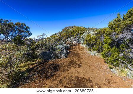 Hiking Path, Piton De La Fournaise, Reunion Island