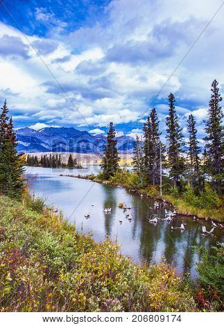 Rocky Mountains, Canada. Shallow-water lakes, picturesque firs and distant mountains. Lush clouds are reflected in the smooth water. The concept of car and active tourism