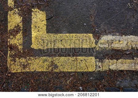 Street road end corner with double yellow lines full of leaf debris background