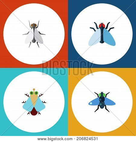 Flat Icon Fly Set Of Tiny, Hum, Dung And Other Vector Objects