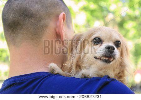Man holding dog. Adoption concept