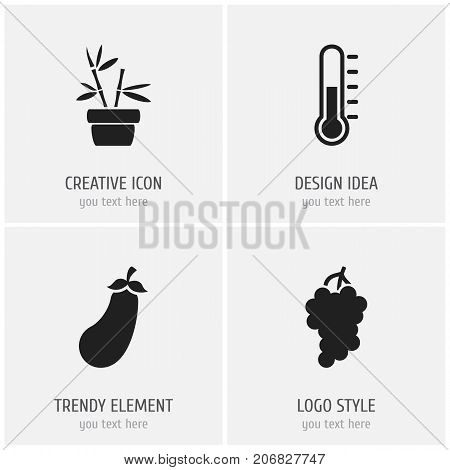 Set Of 4 Editable Planting Icons. Includes Symbols Such As Flowerpot, Aubergine, Temperature And More