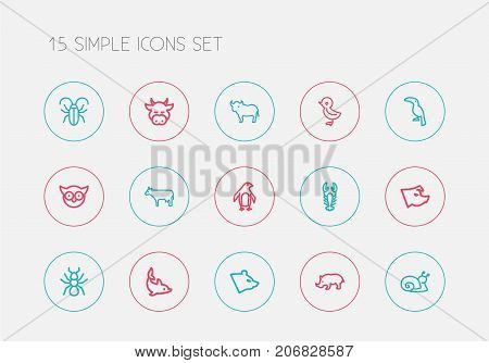Set Of 15 Editable Zoo Outline Icons. Includes Symbols Such As Cattle, Piglet, Insect And More