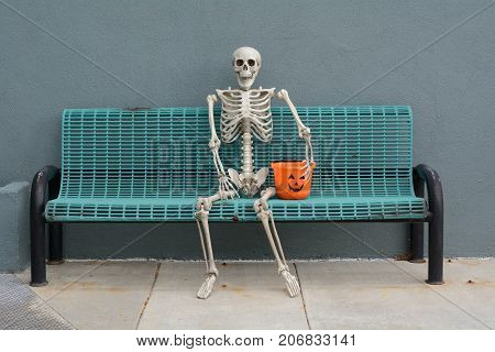 Halloween Skeleton sitting on bench with jack o'lantern trick or treat bucket