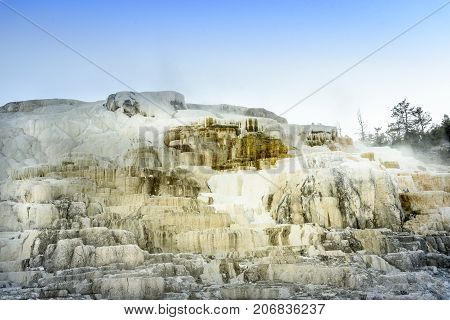 Iconic steaming geothermal Mammoth Hot Springs on Yellowstone National Park