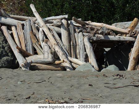 Driftwood Fort Oregon Coast Beach near Brookings