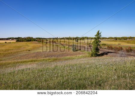 Railroad Track and Trees on Canadian Prairie Under Blue Sky