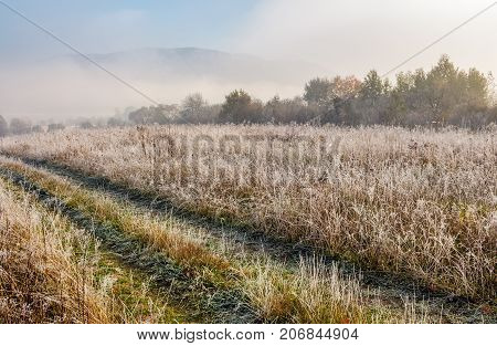 Path Through Meadow In Hoarfrost At Sunrise