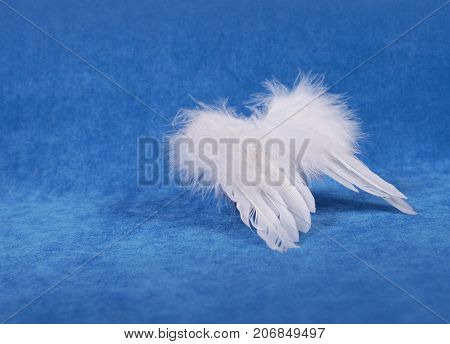 Christmas Decor - Angel Wings
