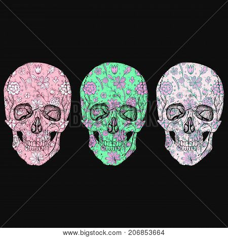Fabulous vector skull photographs