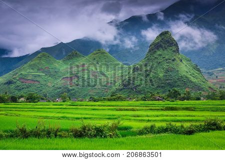Mu Cang Chai rice fields and the mountains background. Countryside landscape Vietnam.
