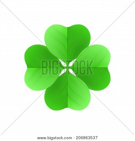 Irish shamrock lucky plant isolated white background. Irish shamrock a lucky plant isolated on a white background on the day of st. patrick. Clover in the form of a vector illustration